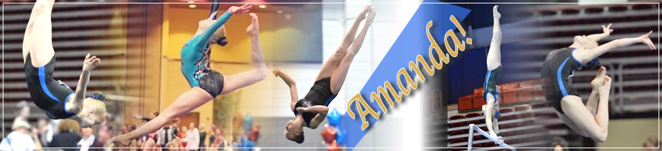 Amanda Arnold - Level 10 Gymnast - Class of 2016